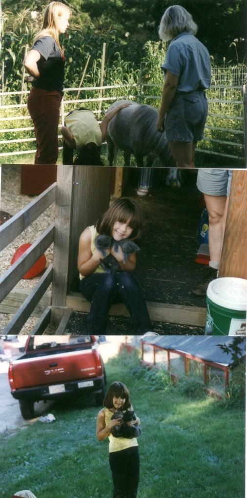 3 photos of a kid on a farm.