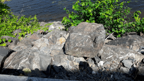 Glaciated rocks on the bank of the St John River.