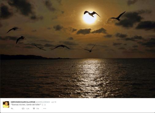 Good Night Twitter - Sweet Dreams?