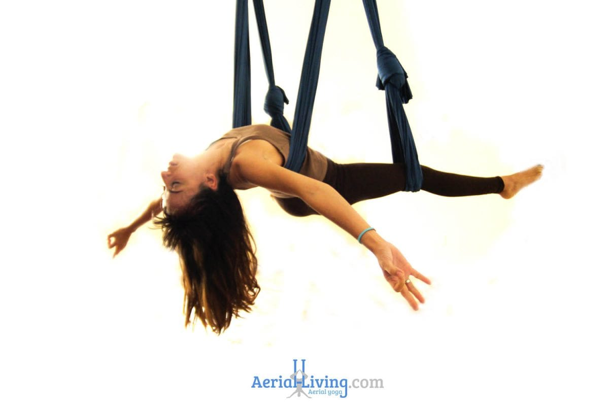 Aerial Yoga Swing Hammock With Handles