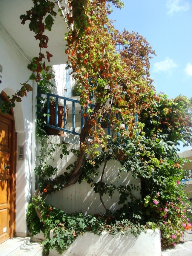 Pretty flower-covered home in Paros