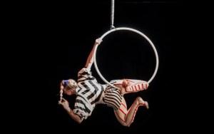 Aerial Hoop / Lyra Hoop