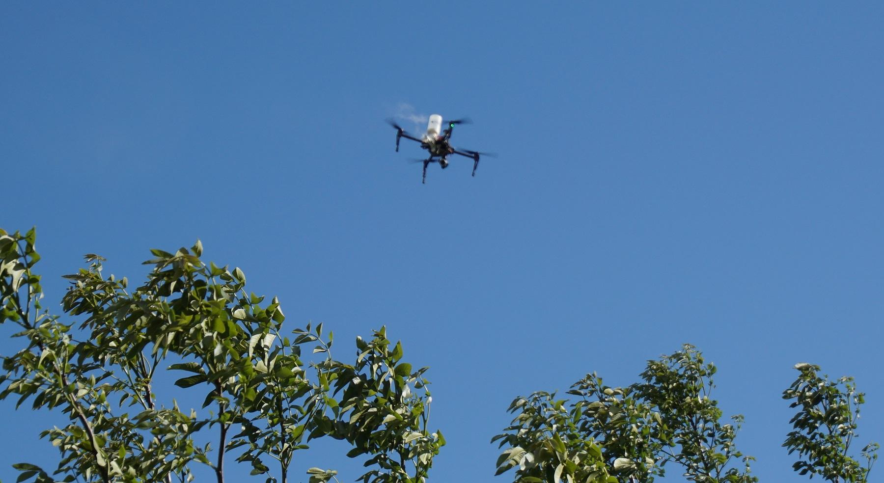 BLY A, soluzione drone per  Impollinazione artificiale