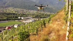 Trattamenti Aerei sui Vigneti Valtellina