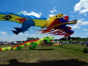 Zwei chinesische 15m Drachen bei einem kurzen Flug am Sonntag