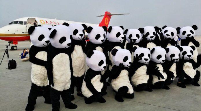 Primeiro voo comercial contou com grande comemoração da Chengdu Airlines.