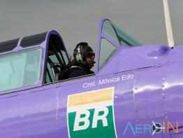 Aeroleme 2015 PT-LDQ 02