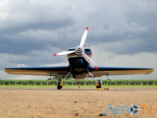 Aeroleme 2015 PU-LBN 03