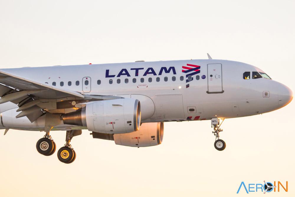 LATAM Cargo transporta onça-pintada de Belém para Campinas.