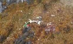 Destroços DHC-6 Carpediem Indonésia