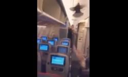 Vídeo Pombo Avião Aeroflot