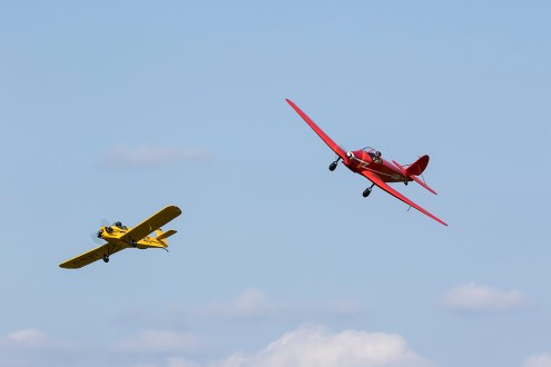 © Adam Duffield • Druine Turbulent & Tipsy Trainer • Shuttleworth LAA Party in the Park