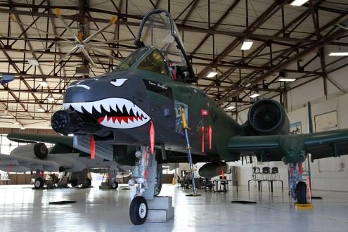 ©Mark Forest - Fairchild Republic A-10A Thunderbolt II - US Air Force Air Education and Training Command