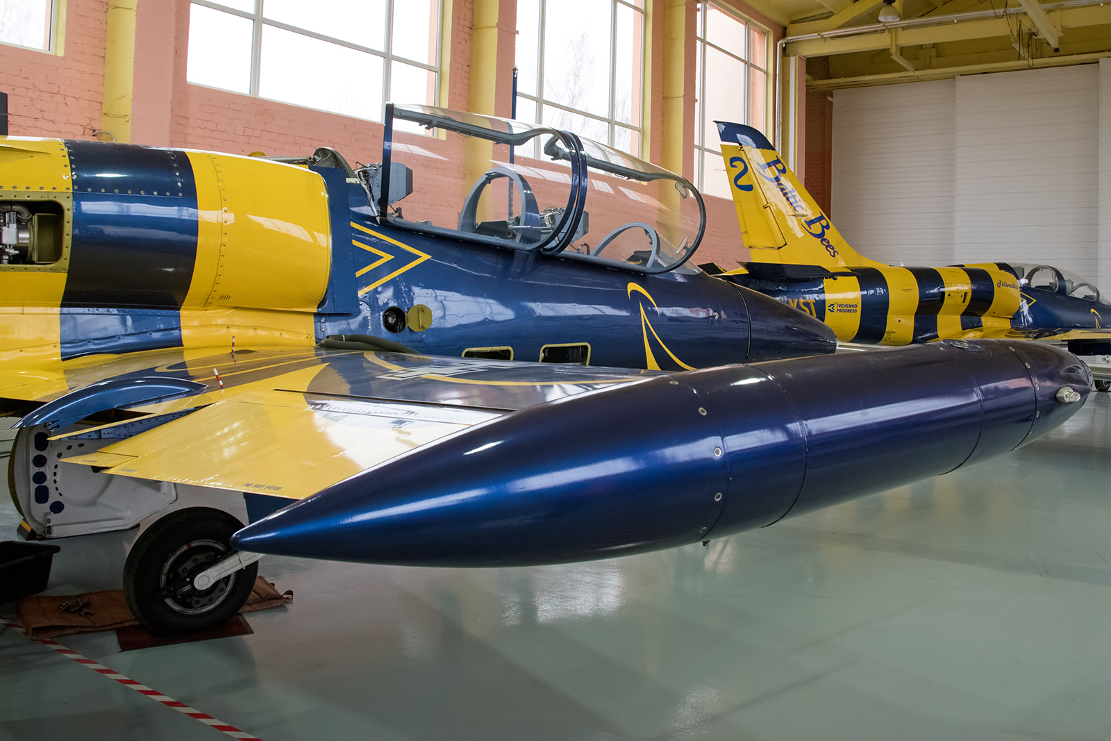 © Duncan Monk - Baltic Bees L-39C Albatross - Baltic Bees Jet Team