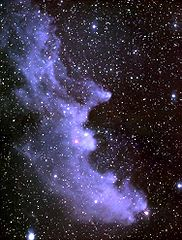 Witch Head Nebula Picture