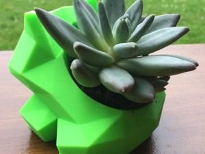 A Bulbasaur planter.