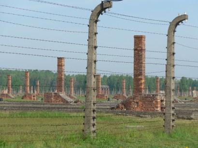 Vue d'ensemble des restes des baraquements de Birkenau