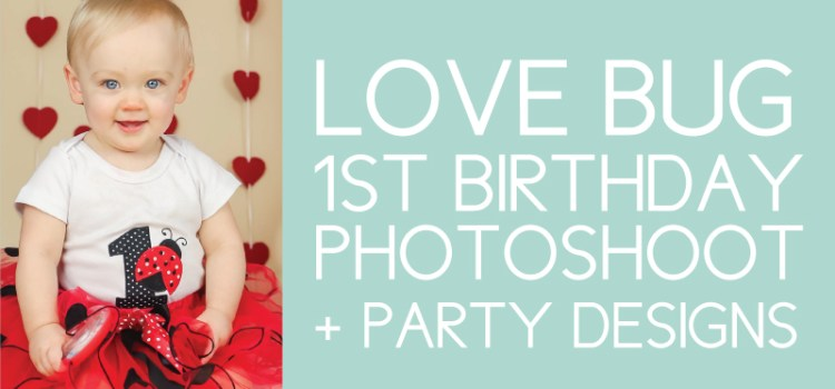 Love Bug Birthday Photoshoot and Designs