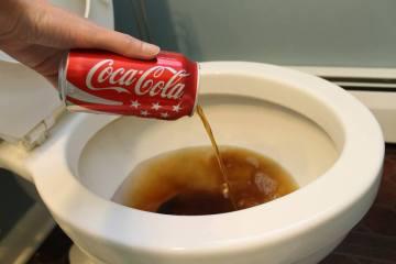 coca-cola-toilette
