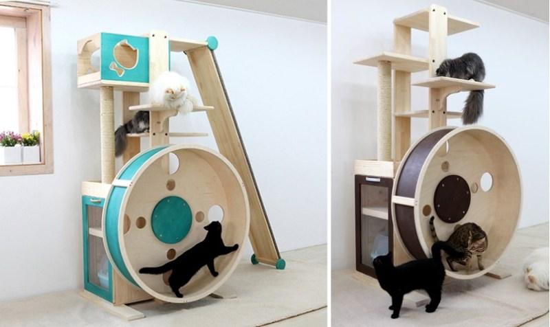 arbres-à-chat-avec-roue