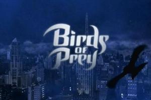 birdoflogo