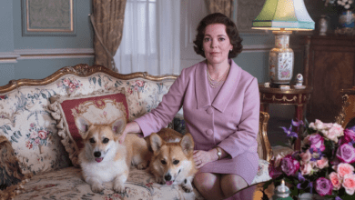 Photo of Netflix dévoile le trailer de la saison 3 de The Crown