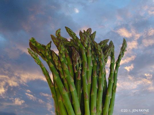 Asparagus Sky
