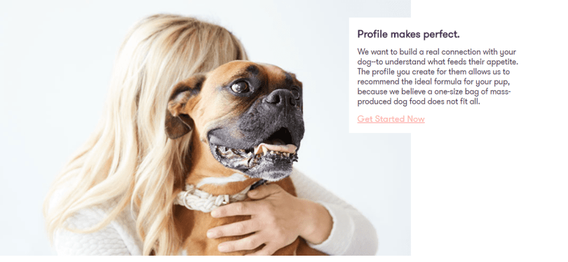 Ollie Coupon Codes- Create Your Dog Profile