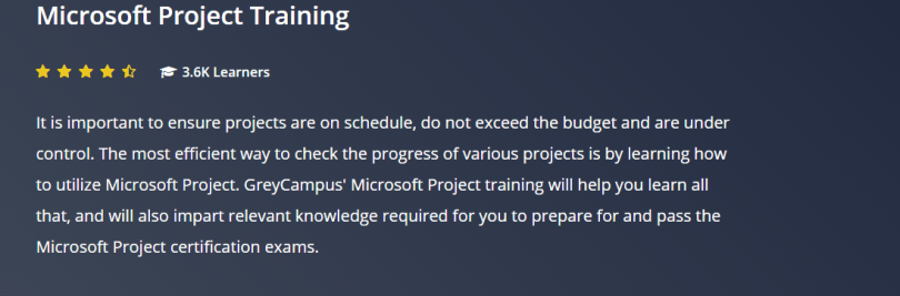 Grey Campus Coupon Codes- Microsoft Project Manager