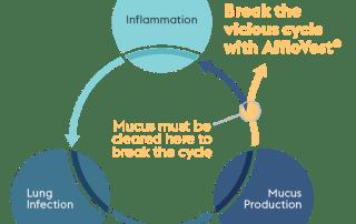 Bronchiectasis Vicious Cycle