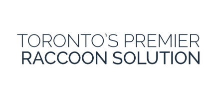 how much does raccoon removal Toronto cost?