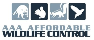 WILDLIFE CONTROL LOGO - Wildlife Removal Logo, Raccoon Removal Company, Squirrel Removal Company, AAA Affordable Wildlife Control Toronto