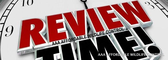 Wildlife Control Reviews Toronto, Raccoon Removal Reviews, Squirrel Removal Reviews