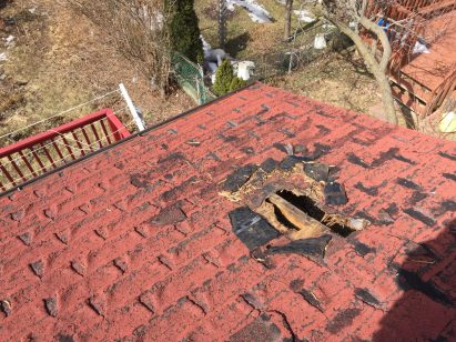 affordable roofing repairs - raccoon damage