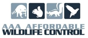 baby squirrels Removal, Squirrel Removal - Affordable Wildlife Control Toronto logo