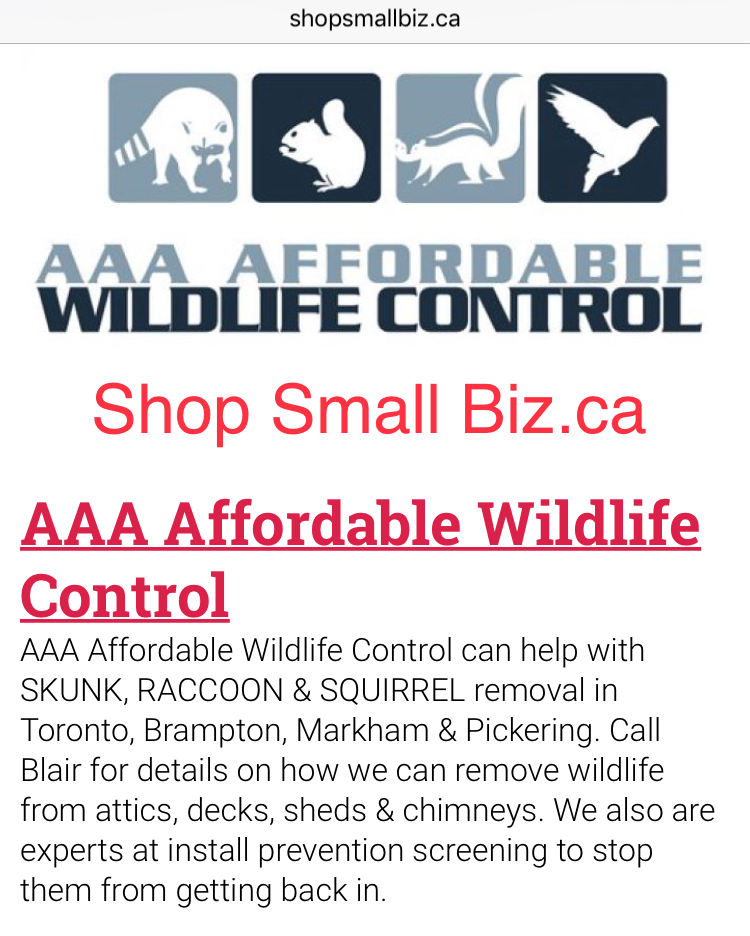 Shop Small Biz.ca Reviews - Affordable Wildlife Control Reviews Toronto
