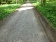 Chemin de forêt après passage du Rubbermat