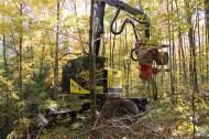 Timberpro TB 630 abatteuse