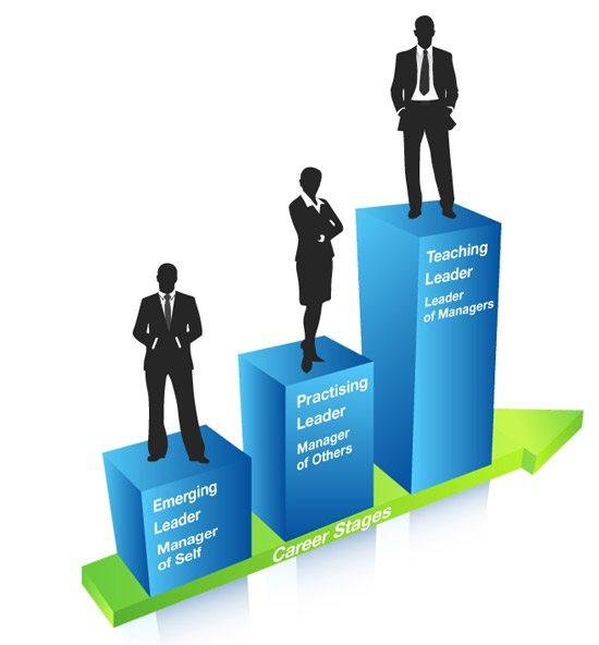 اهمية التنظيم في عملية الادارة