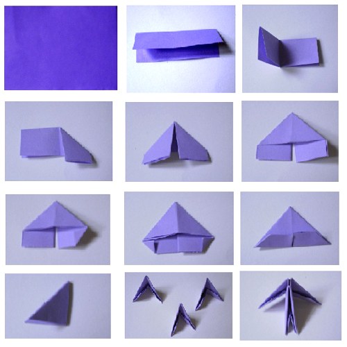origami butterfly basic shape