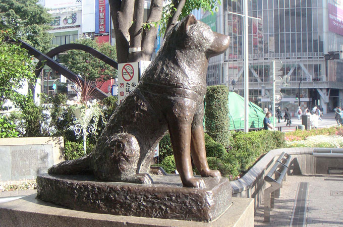 Hachiko statue at Shibuya station