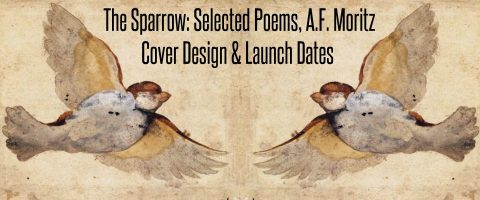 The Sparrow Cover Design and Launch Dates