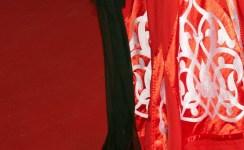 DSC_6790 dettaglio vestito cinese - afnews