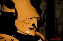 DSC_6834 testa di samurai - afnews
