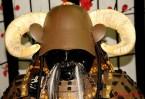 DSC_6836 testa di samurai - afnews