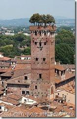 Torre_Guinigi