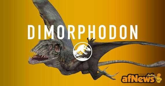 Dimorfodonte