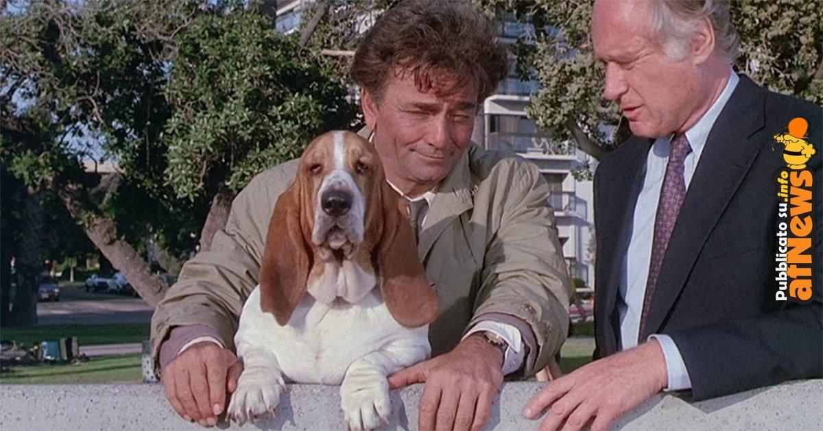 Columbo and Dog