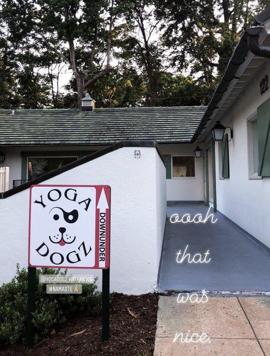 yoga-dogz-winston-salem