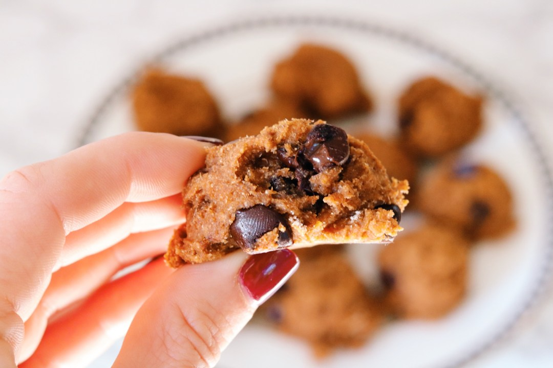 melt in your mouth chocolate chip cookie